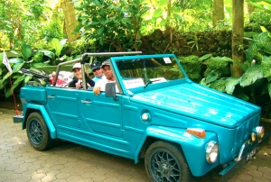 VW Tours Topless – private tours with guide